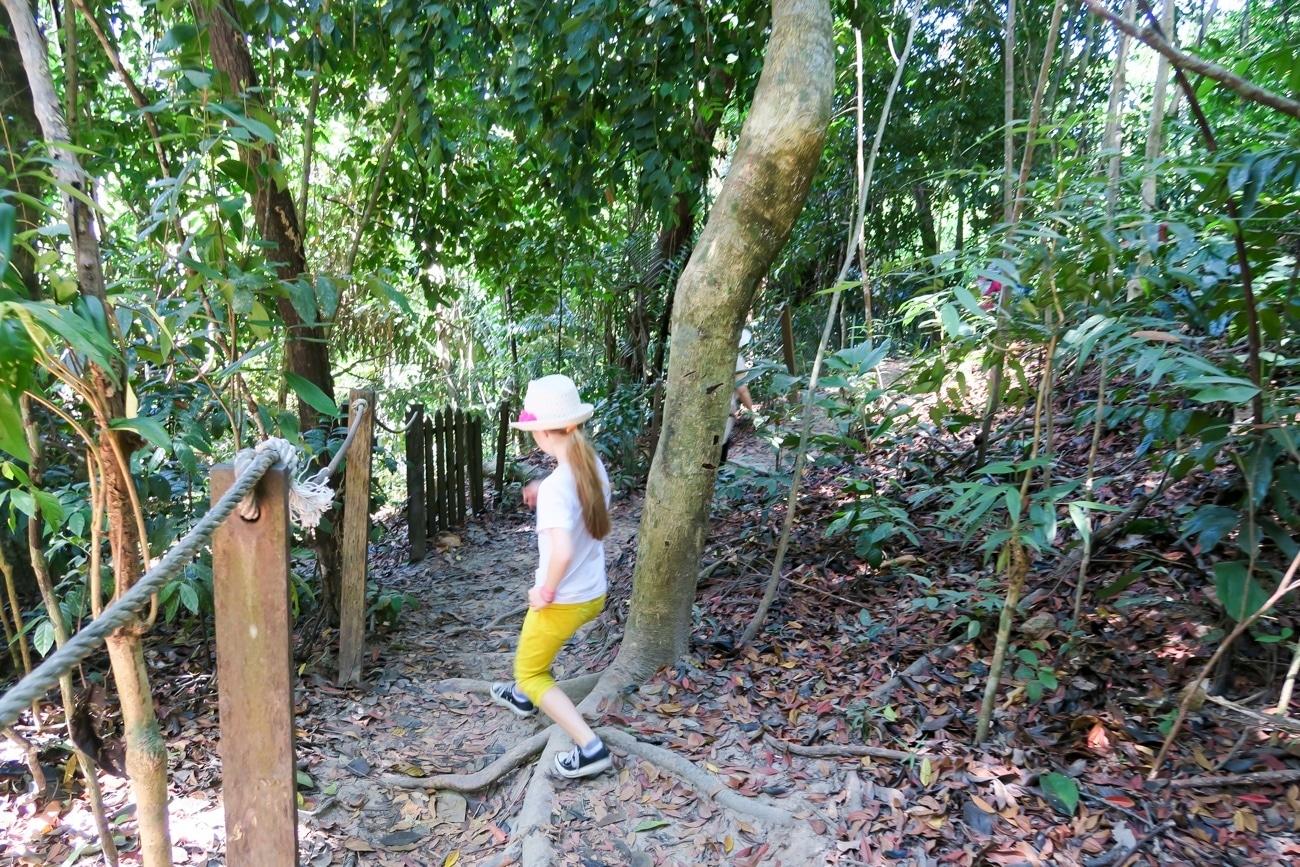 The path to the orangutan viewing platform at Shangri-la Rasa Ria Resort