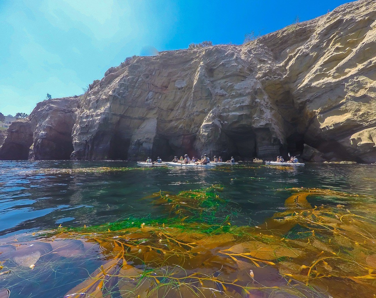 A kayak tour  stops in front of the La Jolla sea caves.