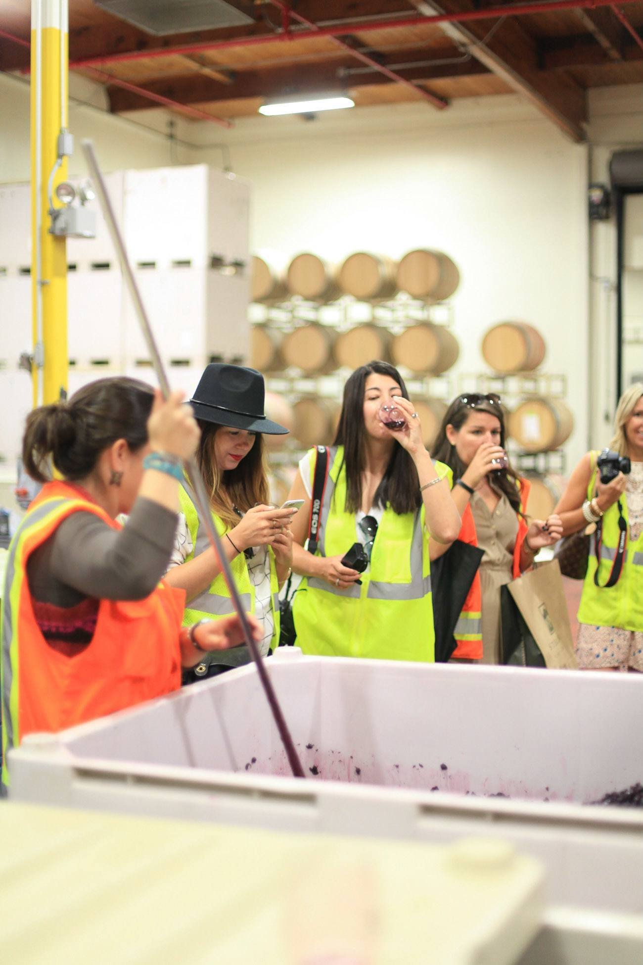Tasting young wines at Sterling Vineyards in Napa Valley