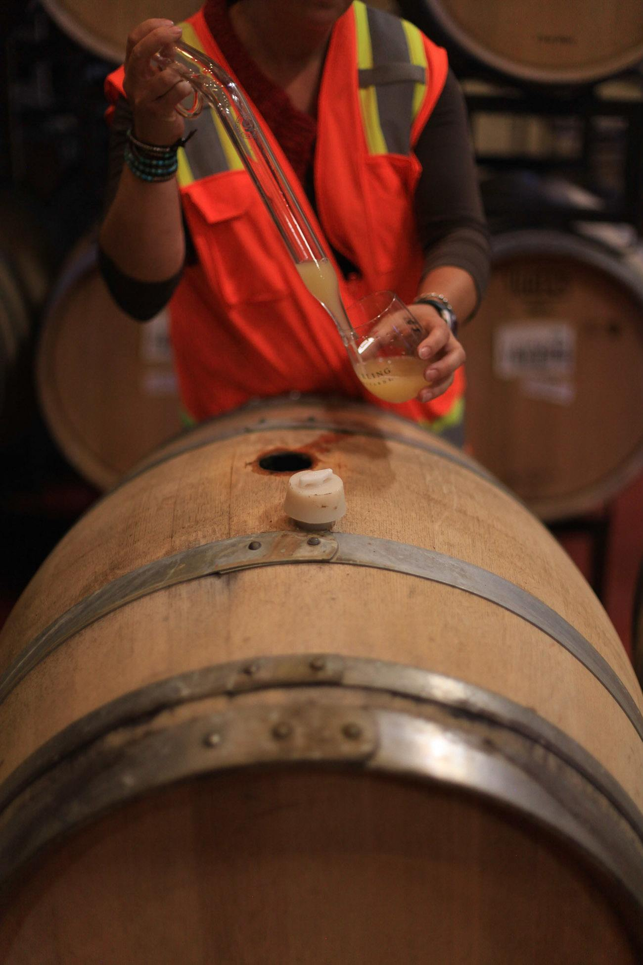 Tasting Chardonnay from a barrel at Sterling Vineyards in Napa Valley