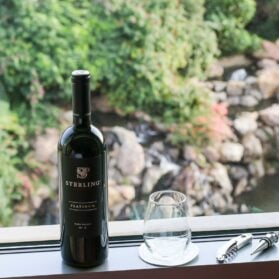 Tips for Traveling with Wine