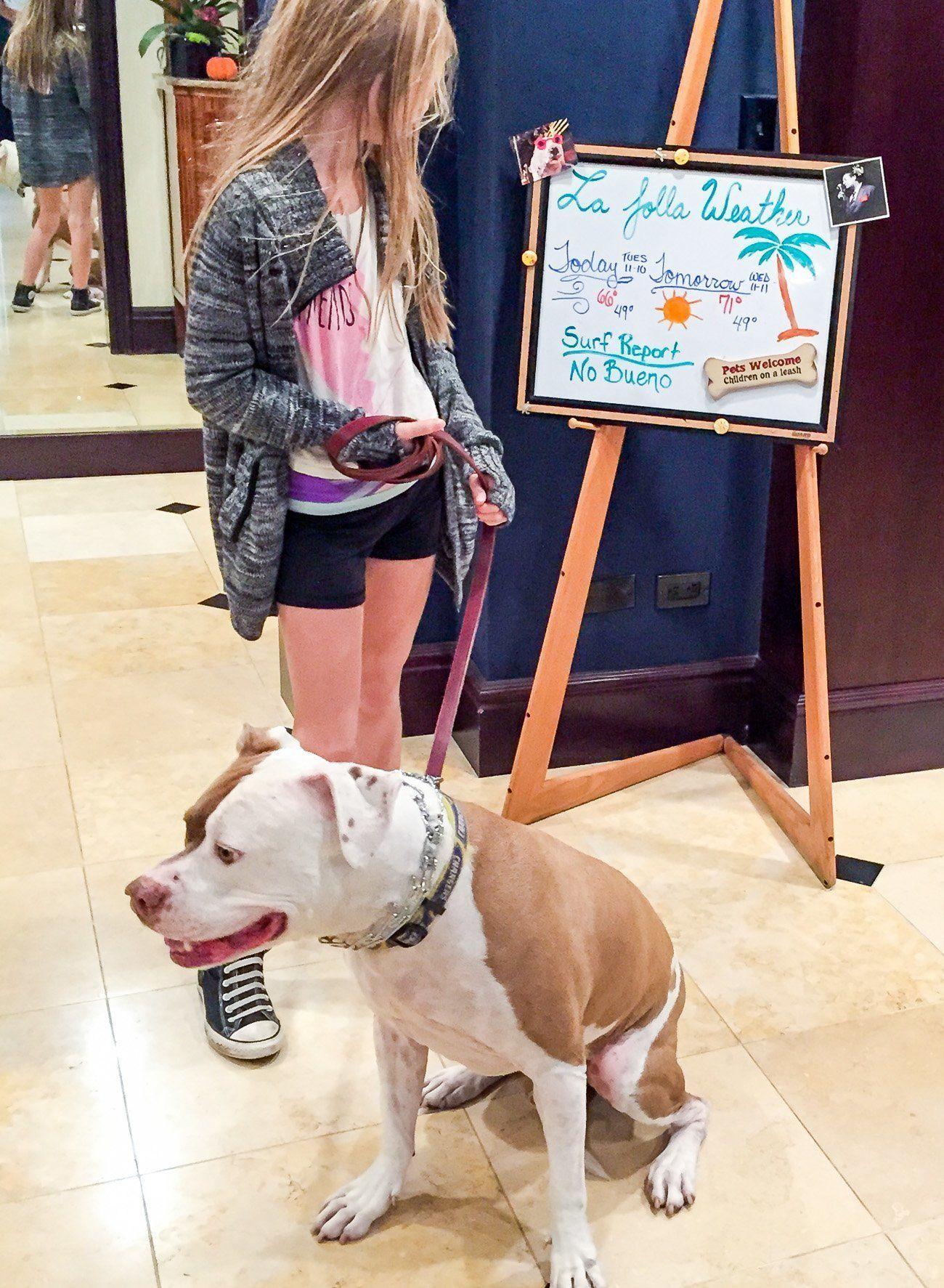 Empress Hotel La Jolla is one of San Diego's best pet-friendly hotels.