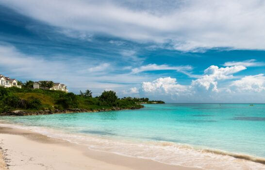 Paradise and Swimming Pigs at Grand Isle Resort in the Bahamas