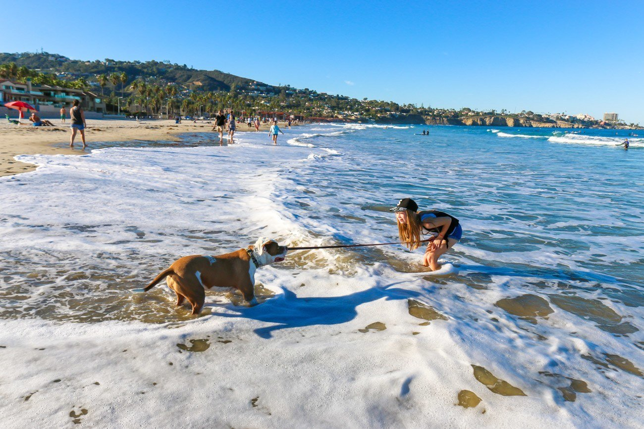 La Jolla Shores Beach is one of La Jolla's best attractions.
