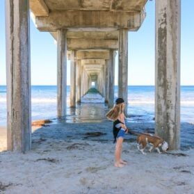 10 Best Places to Take Photos in La Jolla