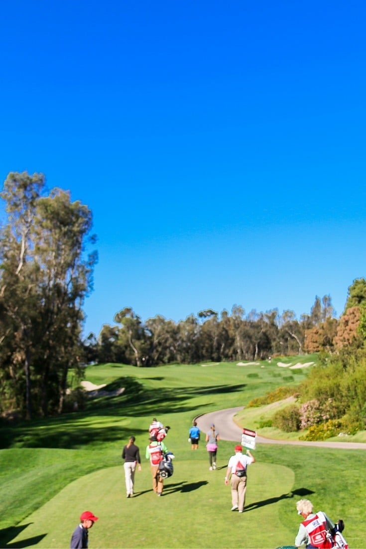 The Aviara Golf in North San Diego is one of the best resort courses in the world and home to the annual Kia Classic.