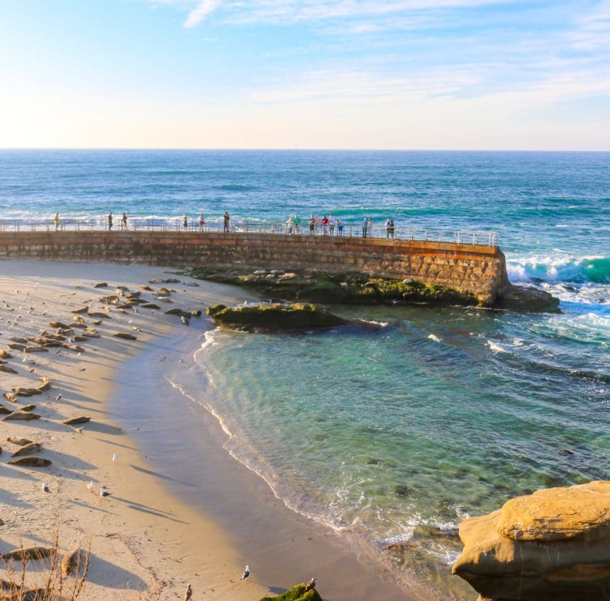 18 Things to Do in La Jolla