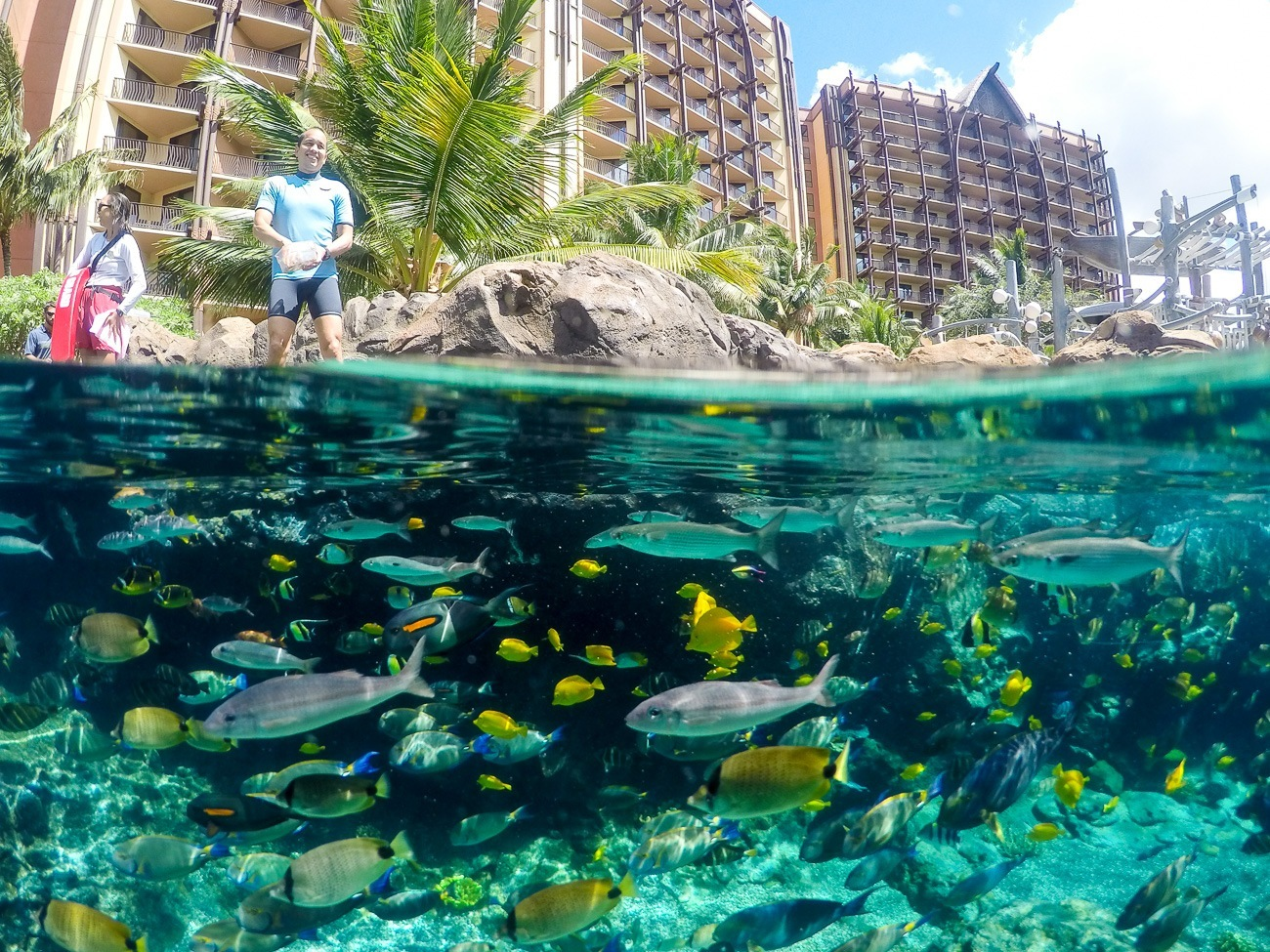 Disney Aulani's Rainbow Reef as show with a GoPro Knekt dome