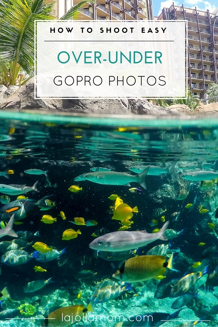 You don't need to be an expert photographer to take over-under or split water photos. You just need a dome and a GoPro.
