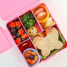How to Choose the Best Bento Lunch Box for Kids