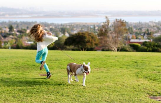 Ask the Expert: Can Diet Prevent Dogs from Having Joint & Ligament Problems?