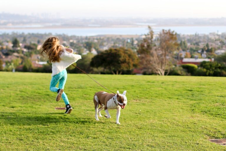15 Best Things to Do with Dogs in San Diego