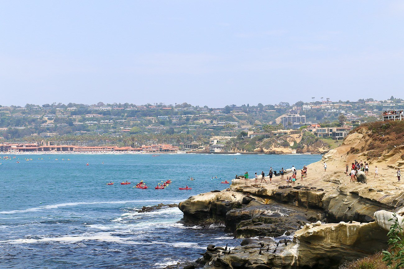 Kayakers and seals seen in the ocean from La Jolla Cove