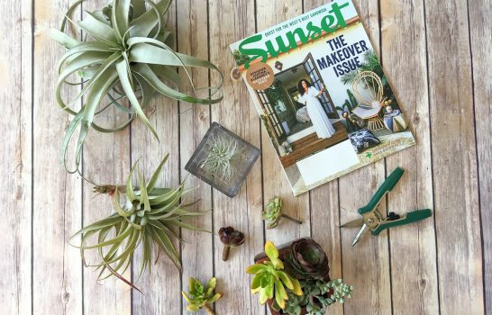 "How to Find ""Me Time"" with Favorite Magazines"