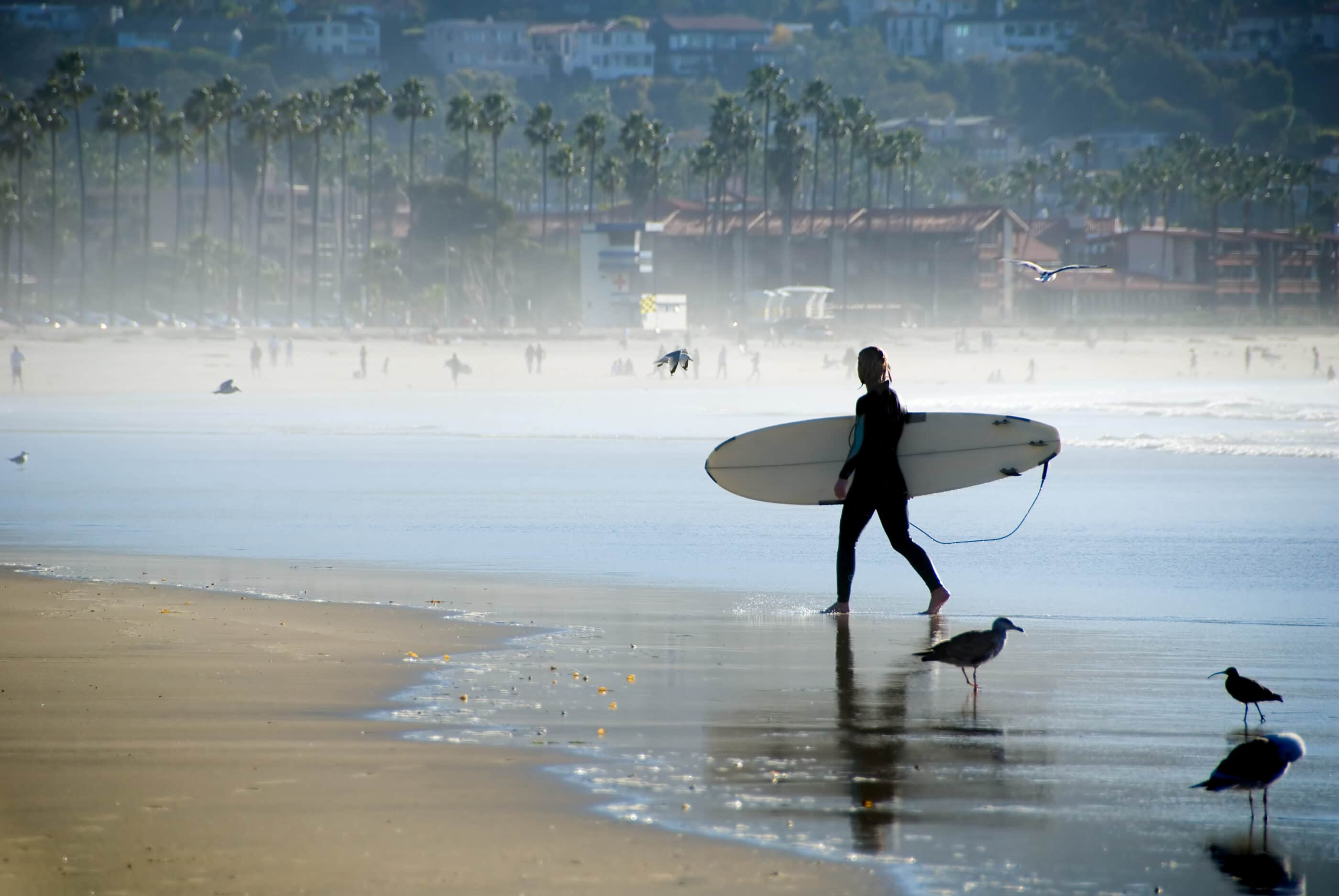 The best things to do in San Diego are outdoors including learning how to surf, cool sightseeing tours, wildlife spotting, hikes and more.