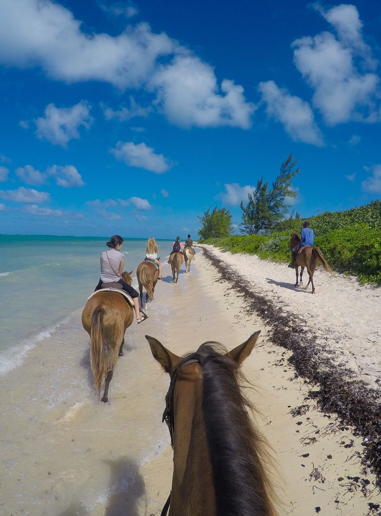 Horseback riding on the beach is a fun Grand Cayman activity with kids or without.