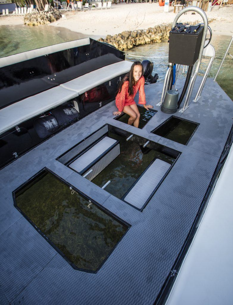 The boat with open bottom in daylight showing how guests can interact with the organisms.