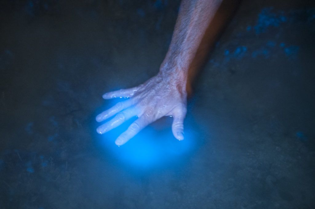 Water glows around a hand in the bioluminescent bay.