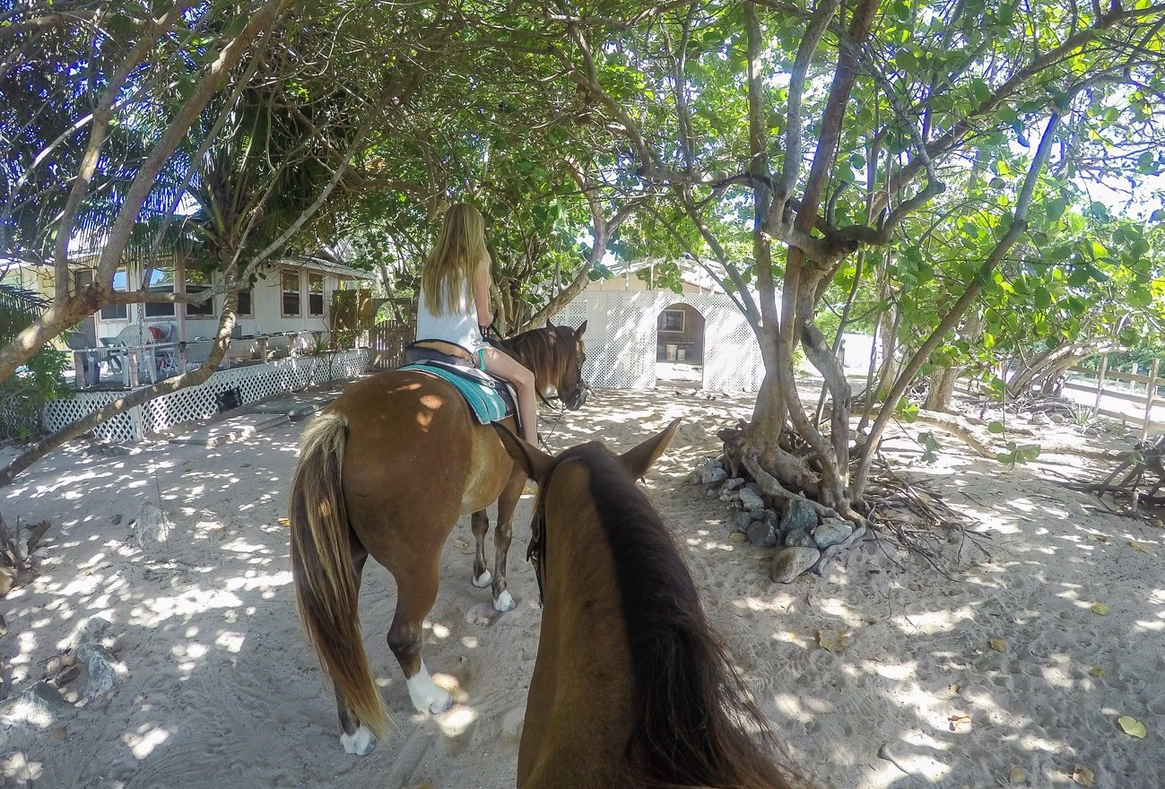 Getting ready to ride horses on the beach with Pampered Ponies on Grand Cayman.