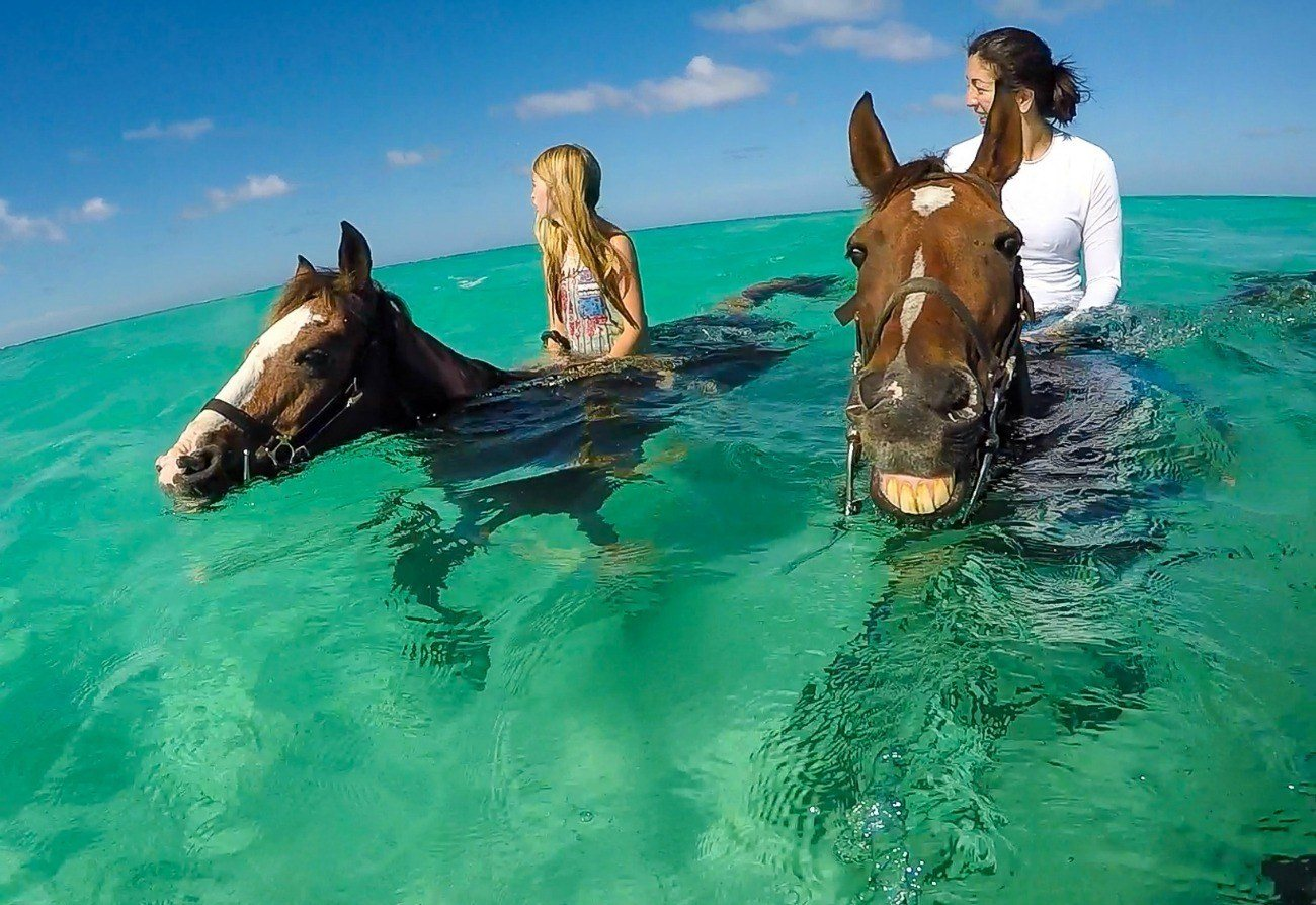 Yes, you can ride a swimming horse on your next family vacation to Grand Cayman.