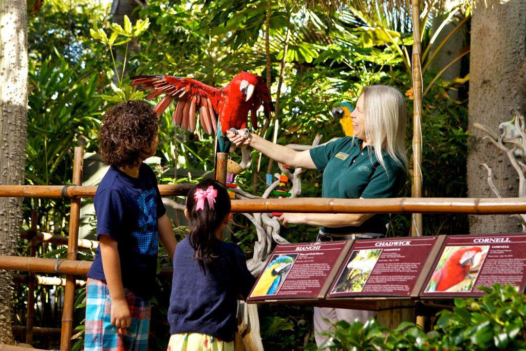 Kid Friendly Hotels San Diego Near Seaworld