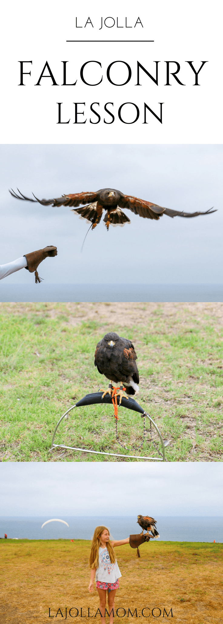 A basic falconry lesson at Torrey Pines Gliderport in La Jolla is an awesome thing to do in San Diego with kids.