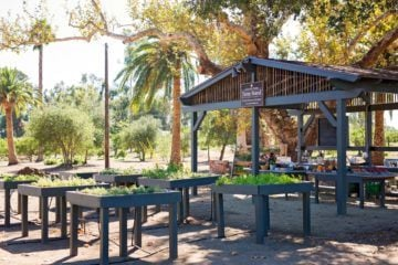 Golden Door's new Farm Stand sells only organic produce and will be open 4 days a week in North San Diego.