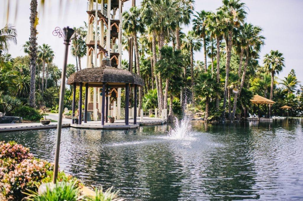 Paradise point resort pool