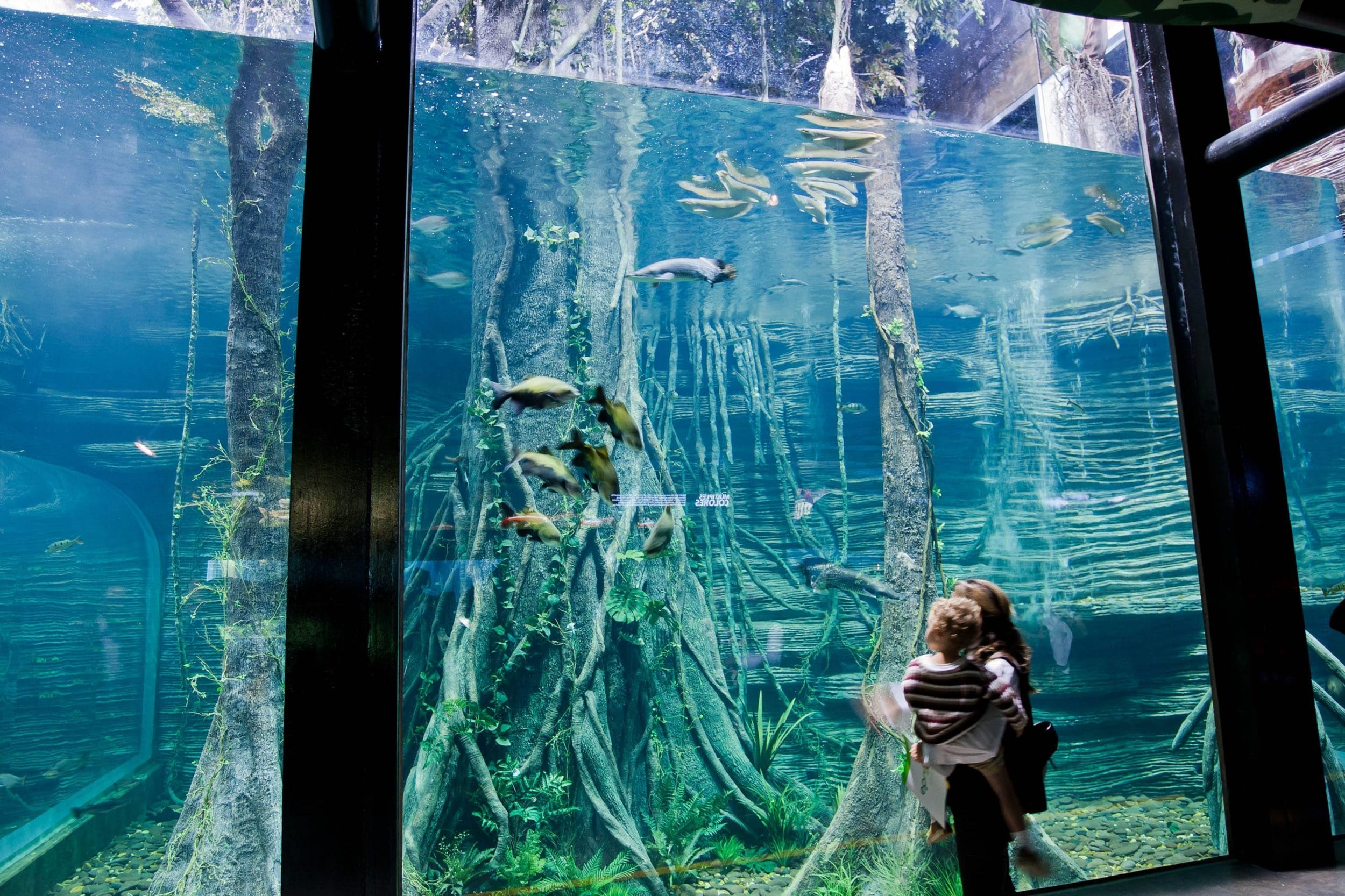 Parque Explora in Medellín, Colombia has an aquarium and planetarium.