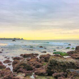 Tips for Visiting La Jolla Tide Pools