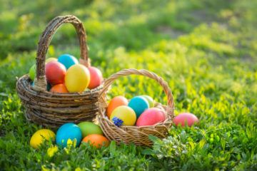 Find the best things to do in San Diego on Easter.