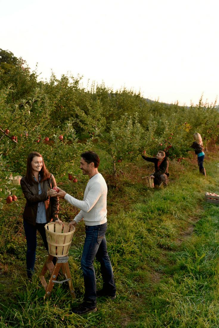 Seasonal apple picking is so fun to do in Gettysburg, Pennsylvania