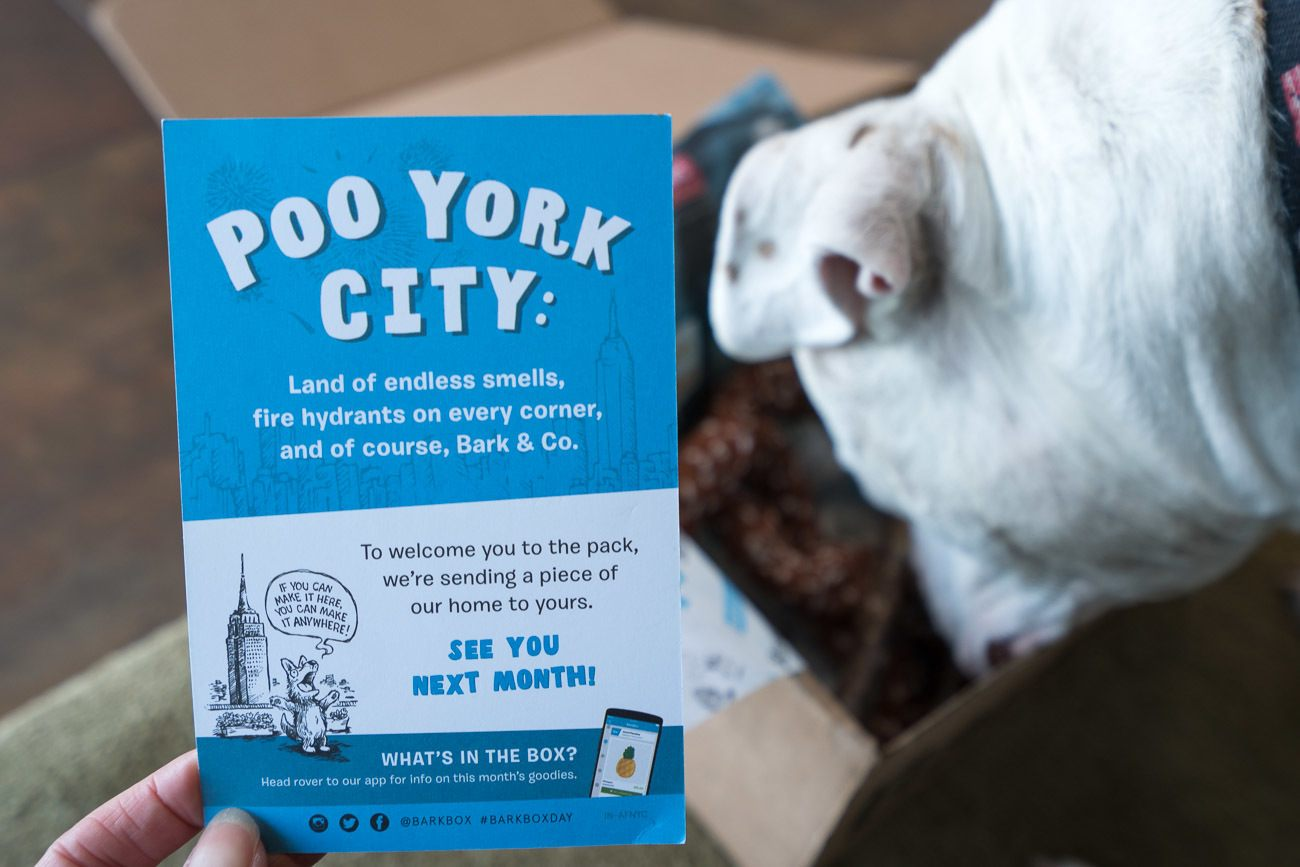 "A ""Poo York City"" BarkBox for dogs"