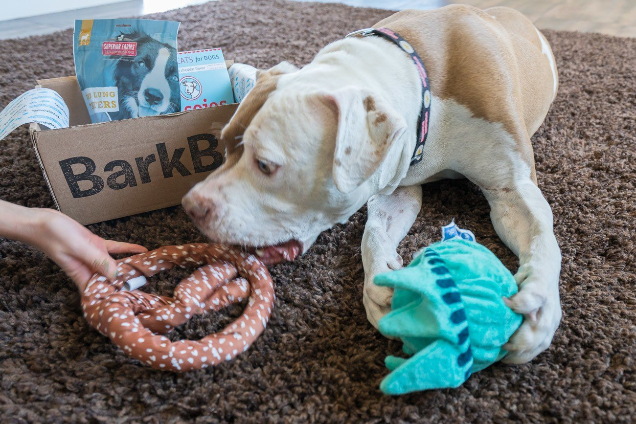 Each BarkBox comes with two themed dog toys.