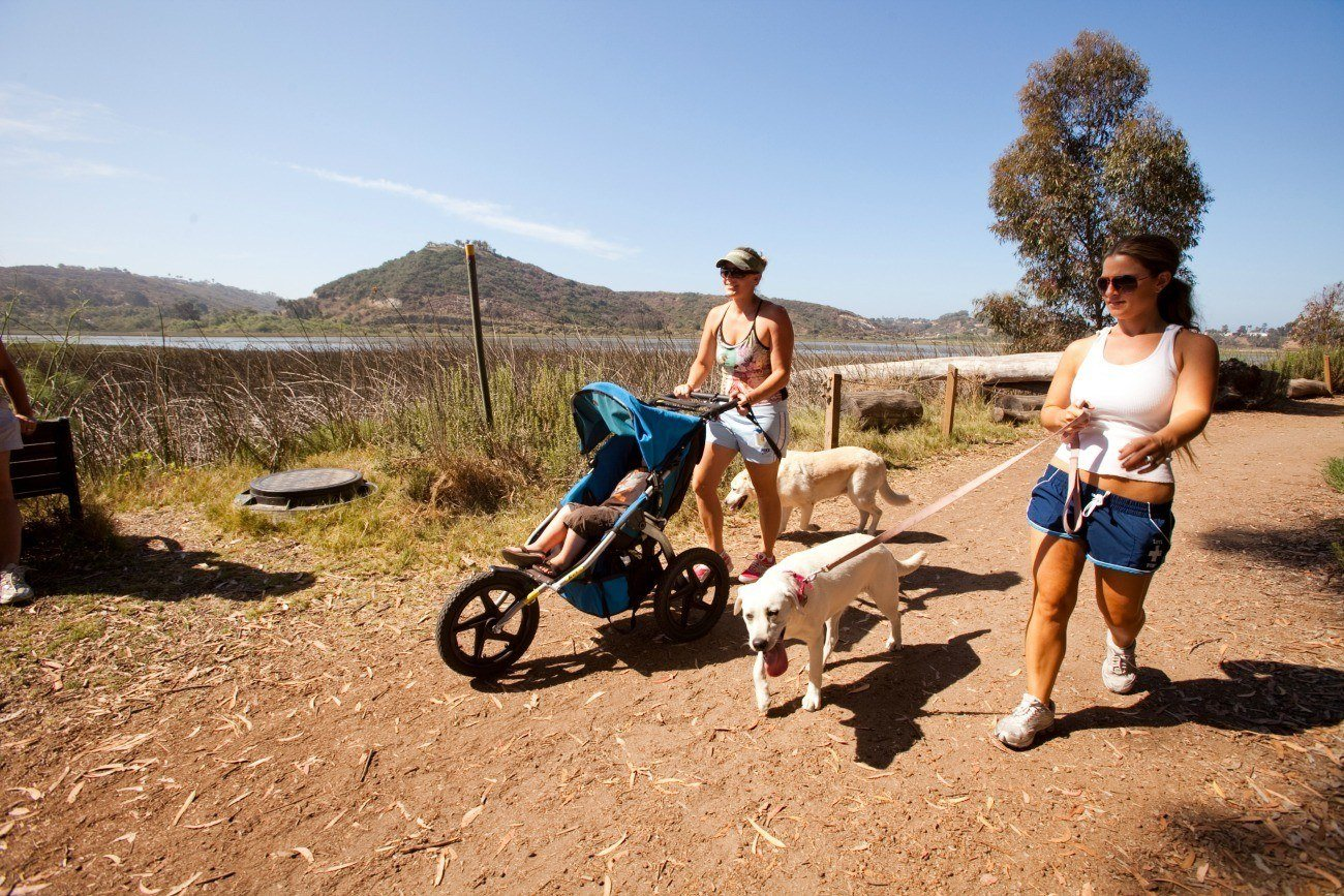 Carlsbad has over 50 miles of trails for walking, hiking and biking.