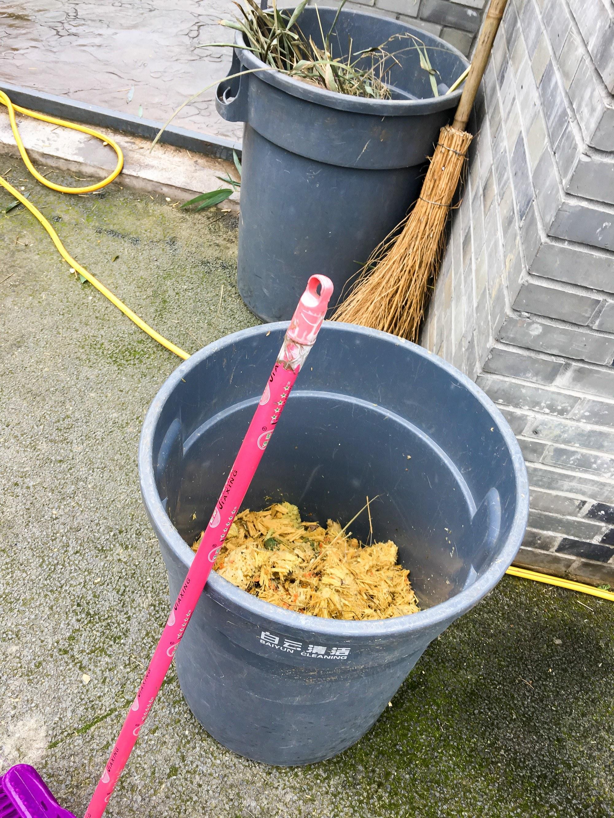 Cleaning panda poop at Dujiangyan Panda Base in China