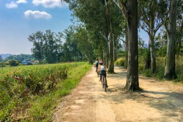 A bike tour in the New Territories is a great way to see another side of Hong Kong
