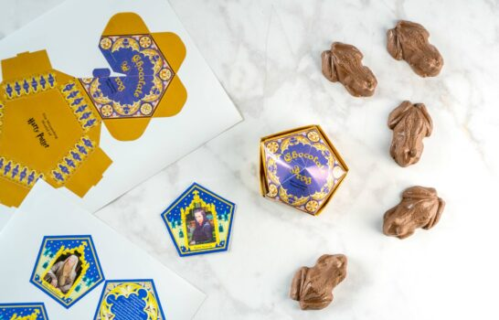 How to Make Easy Harry Potter Chocolate Frogs
