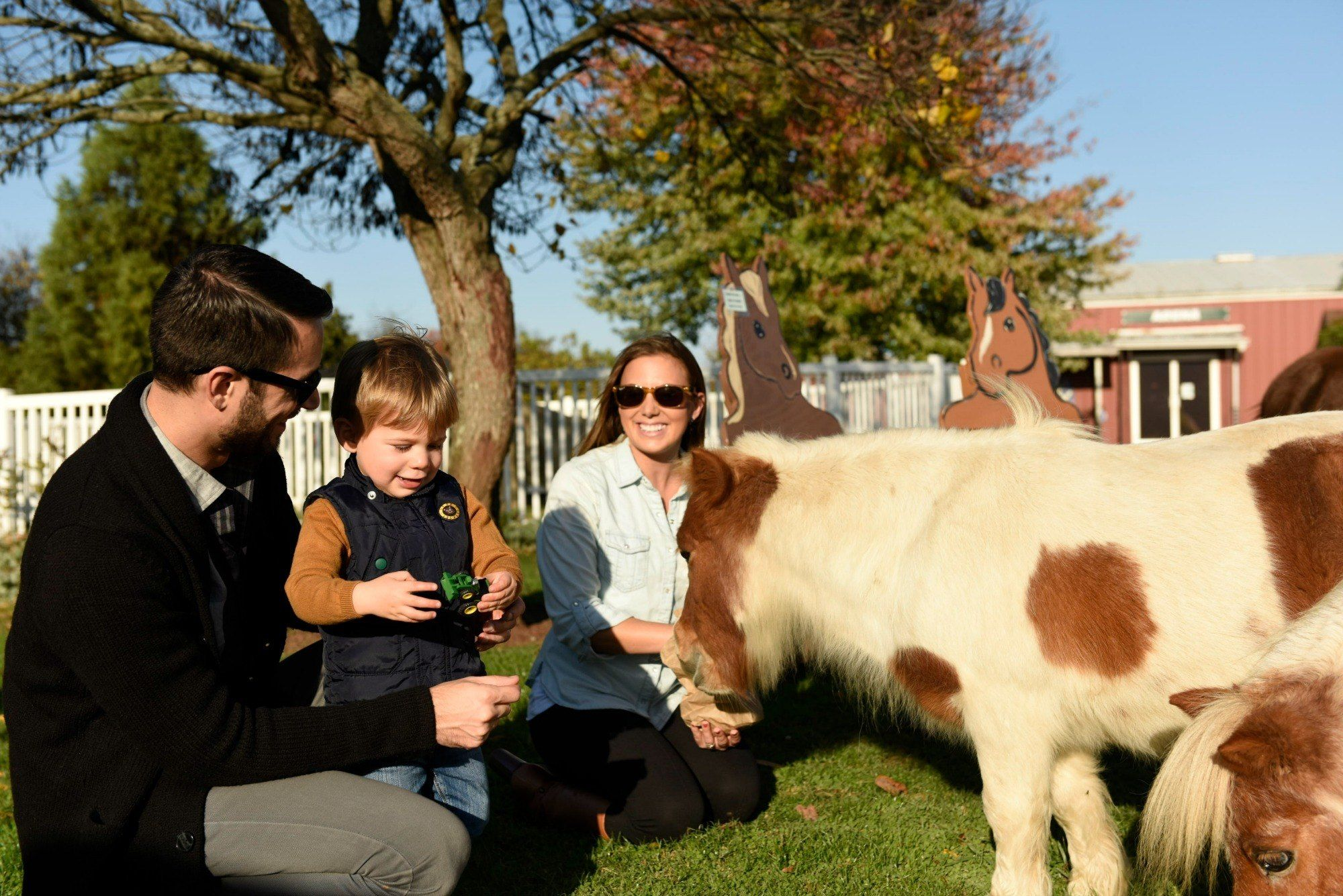 Families can have animal interactions in Gettysburg, PA.