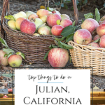 What to do in Julian, California, a perfect day trip from San Diego, including where to eat and drink, camping information, mining tours, hiking, and more.