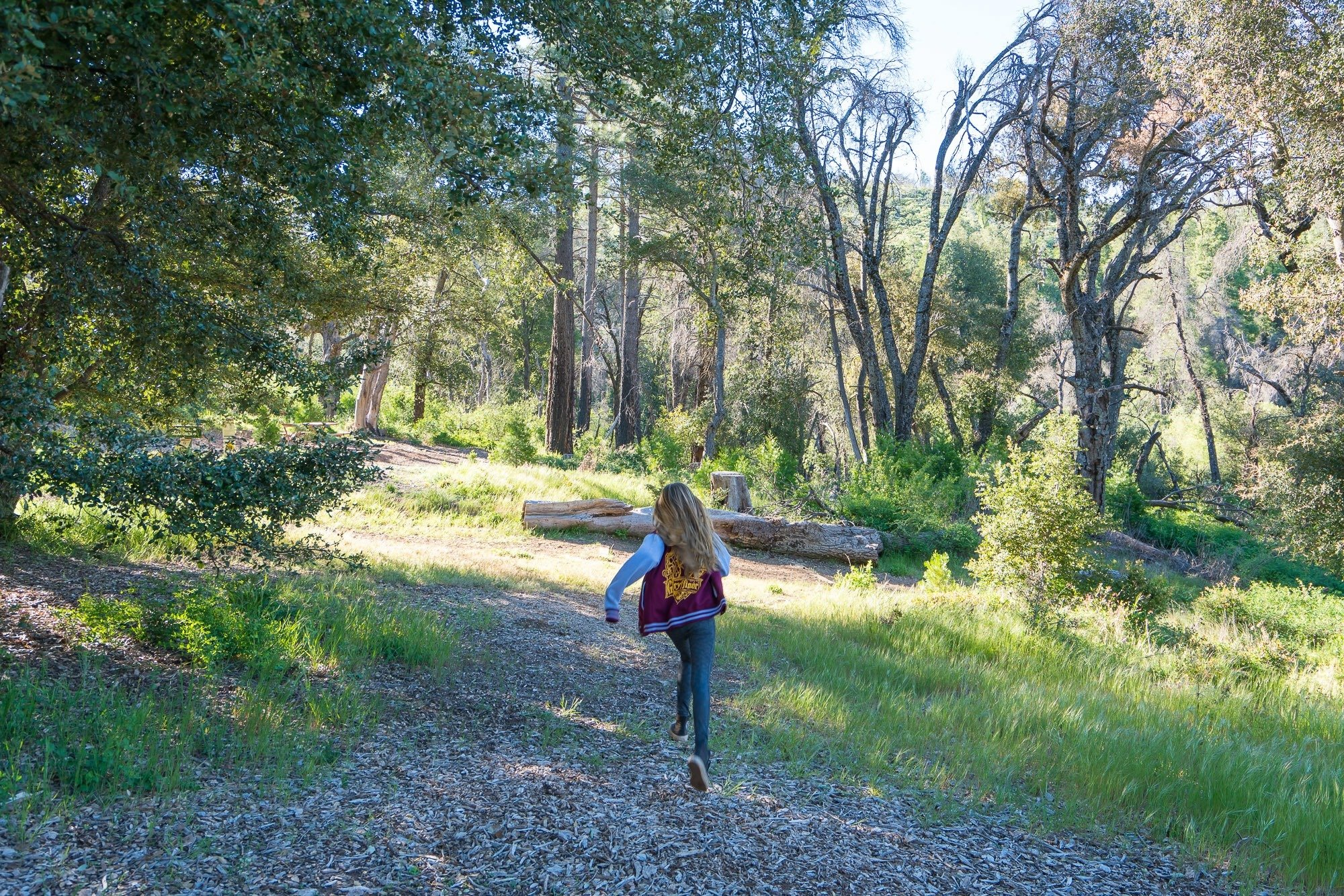 William Heise State Park campground in Julian, California