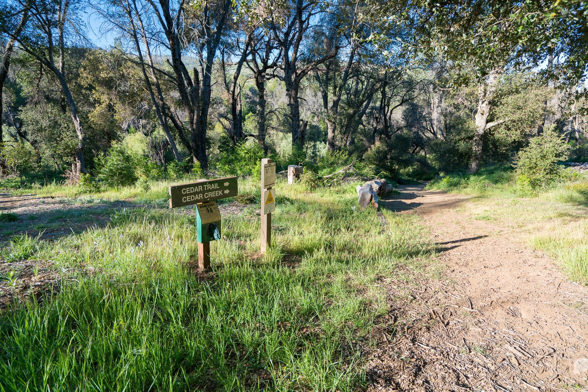 Trails at the William Heise County Park in Julian, Ca