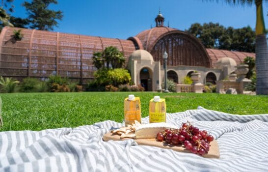 7 Places to Picnic in San Diego this Summer