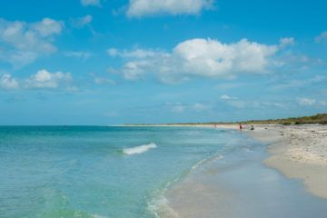 Cayo Costa is a popular thing to do when visiting Sanibel Island.