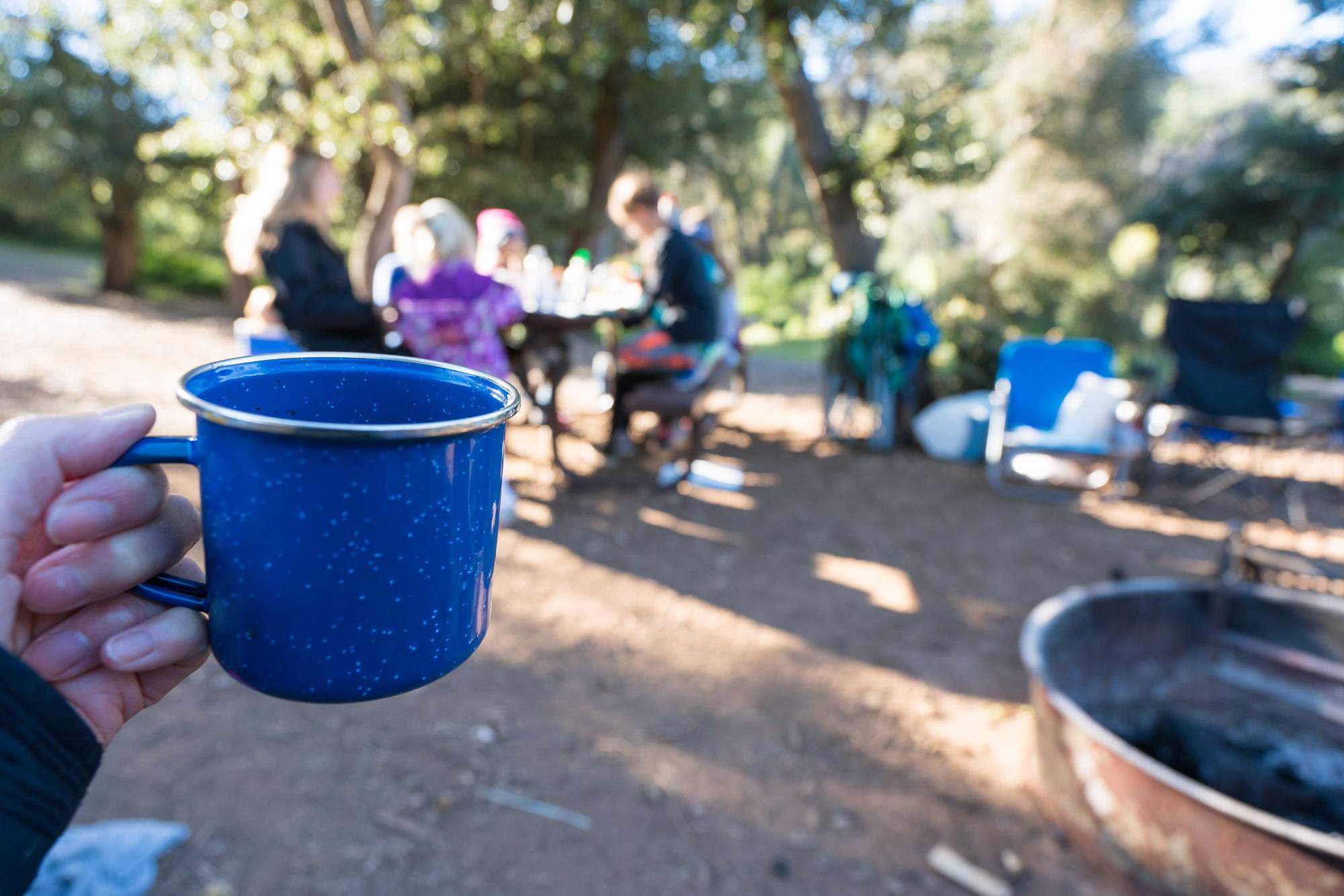 Go camping with friends at William Heise County Park in Julian, California