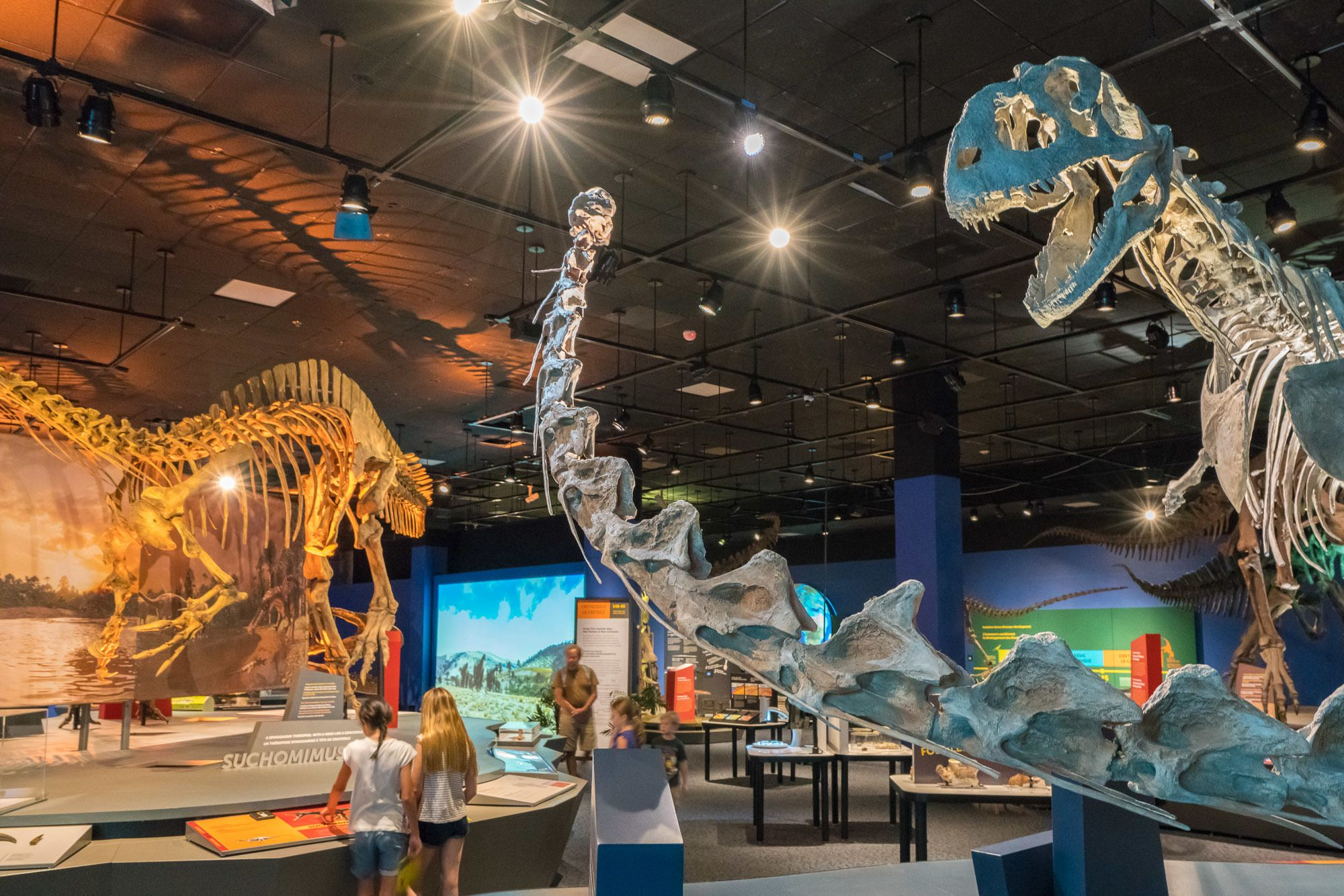 """Ultimate Dinosaurs"" is on display at theNAT through September 4."