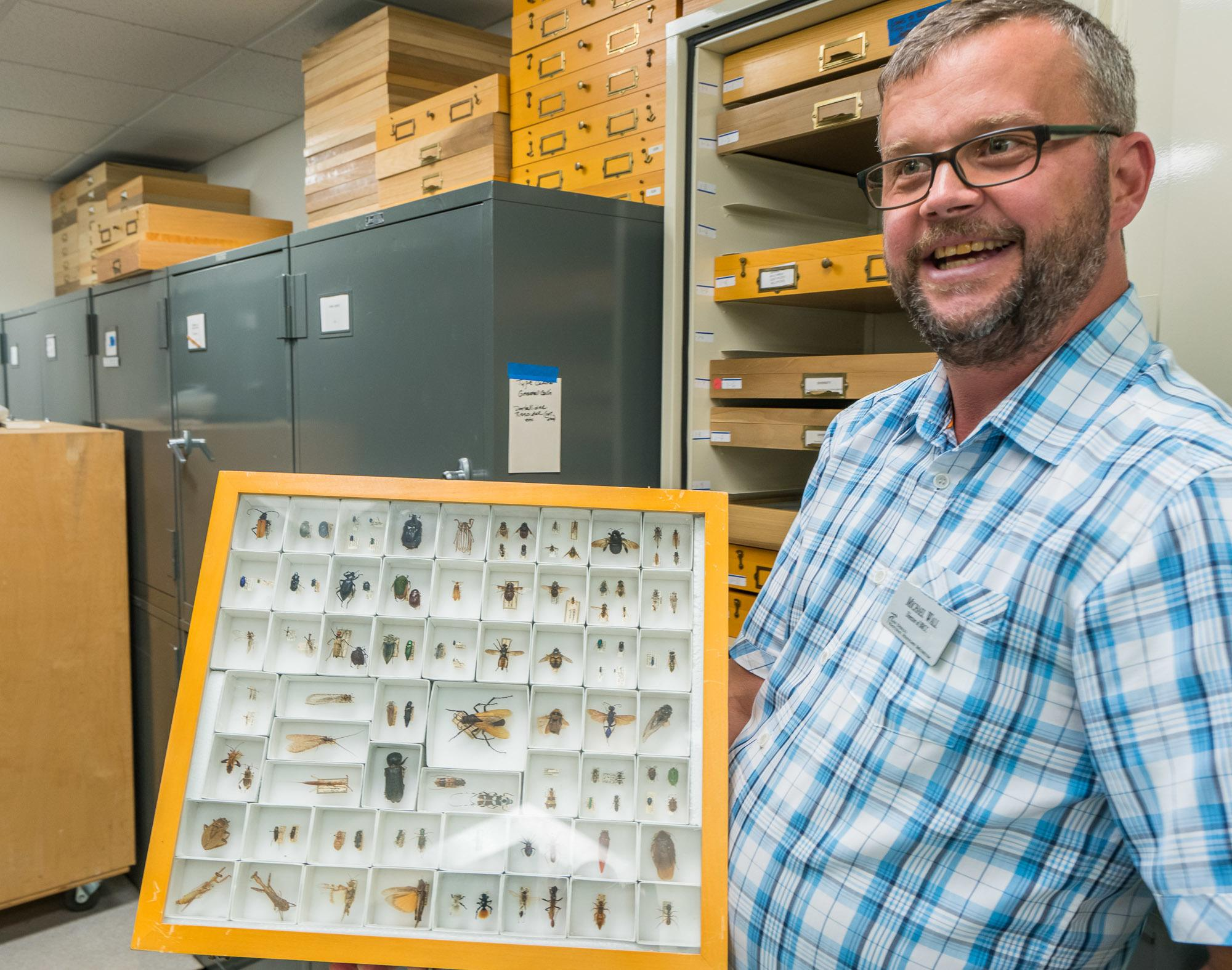 A small part of the San Diego Natural History Museum's Entomology collection.