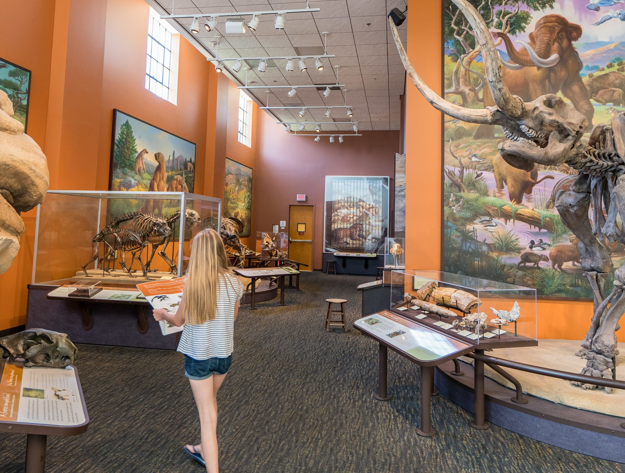 Kids love the scavenger hunts at the San Diego Natural History Museum.