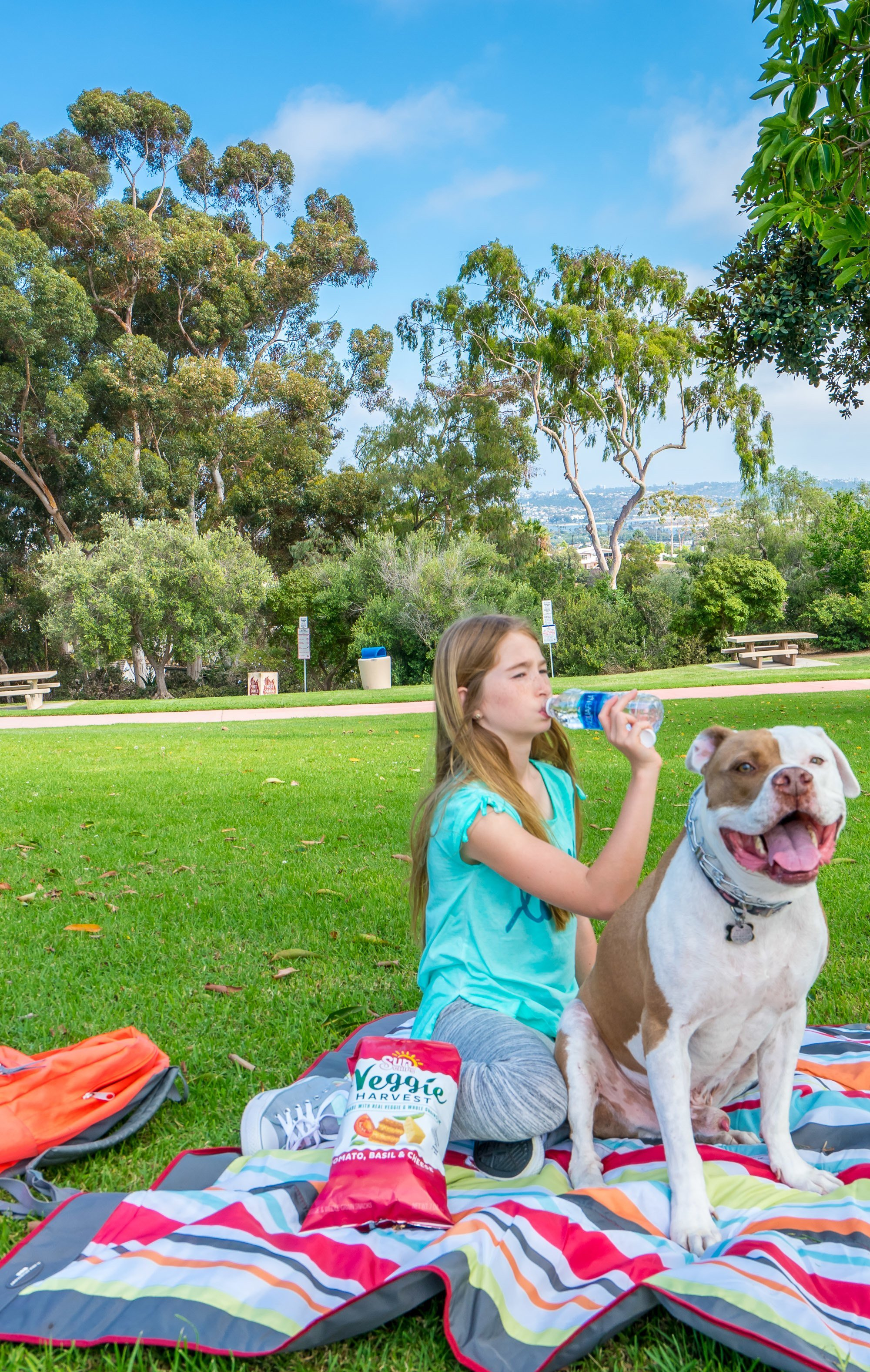 Kate Sessions Park in Pacific Beach is one of the best places in San Diego for a picnic.