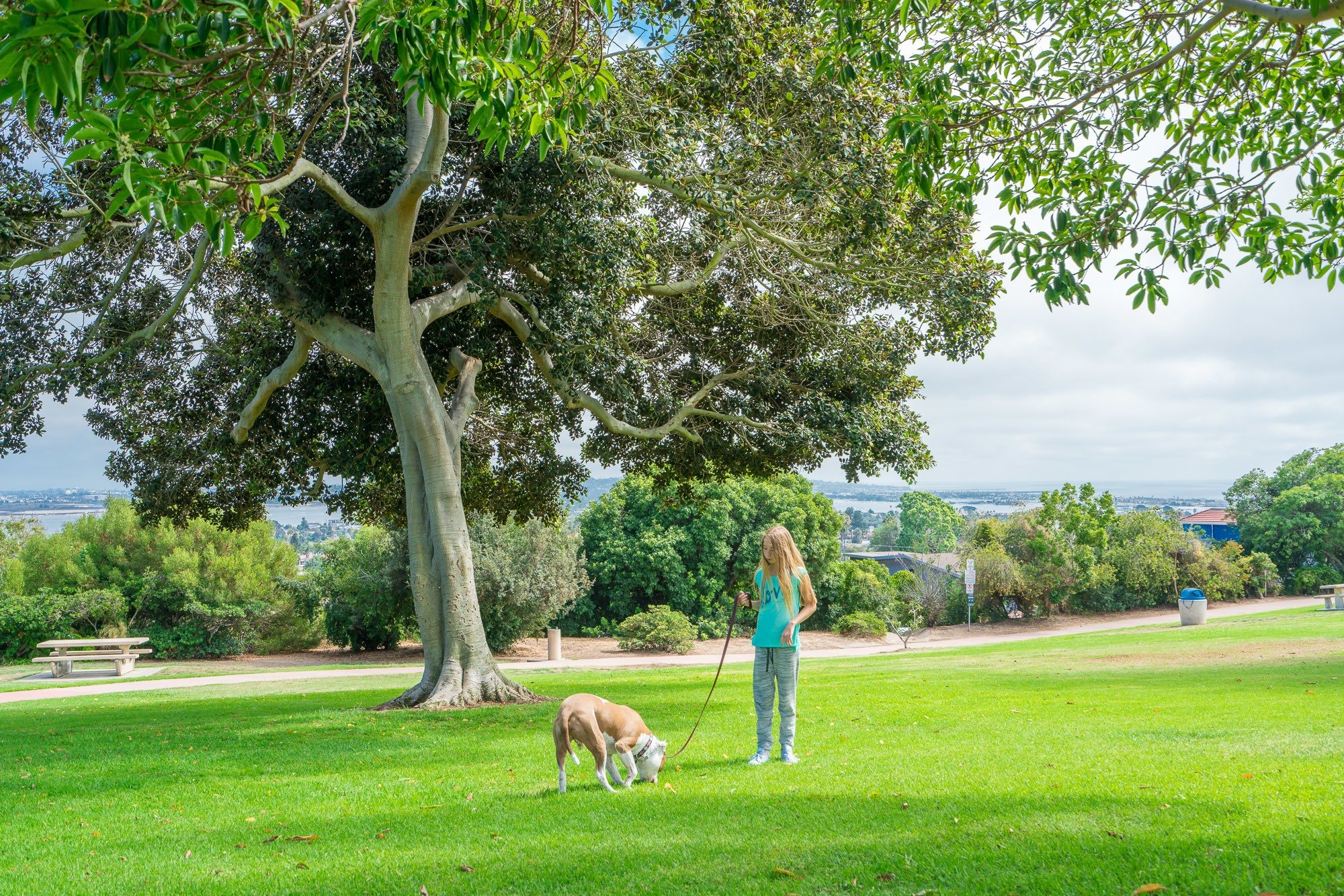 Walking the dog at Kate Sessions Park in La Jolla.